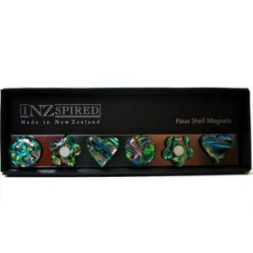 New Zealand Paua Shell Fridge Magnet Collection